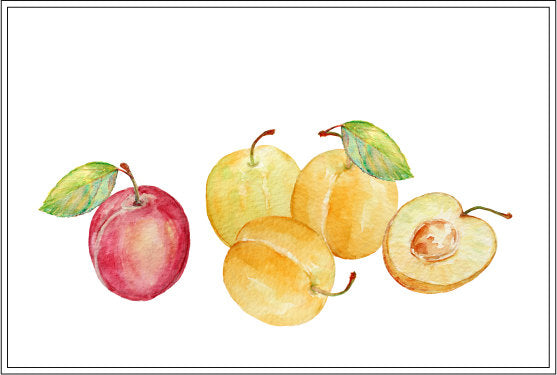 watercolor plum clipart, golden and red plums, plum branch