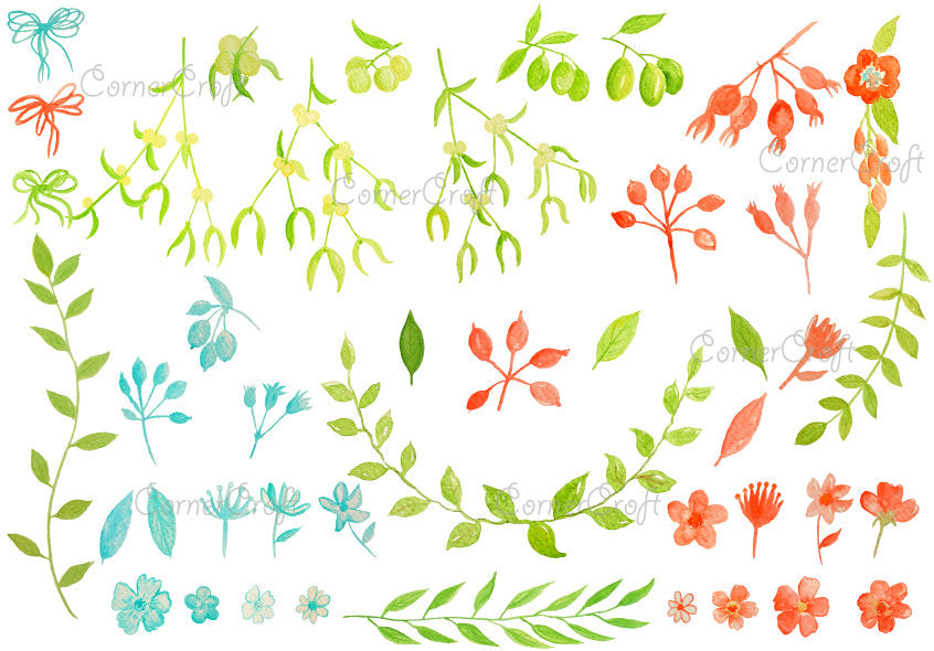 Watercolor mistletoe, olive, blue and orange flowers and berries instant download