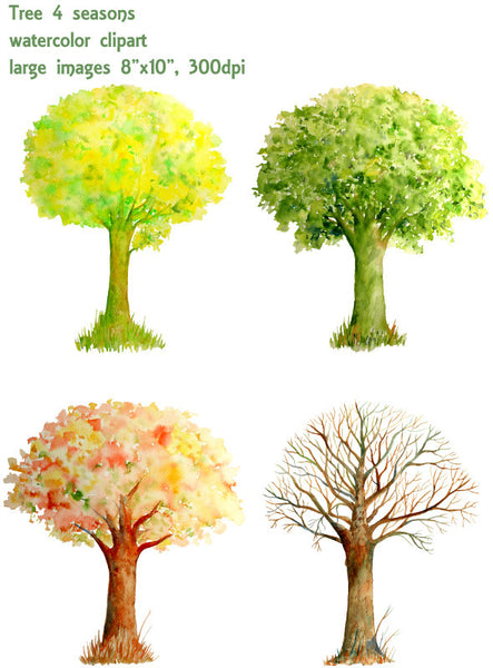 Watercolor Trees Four Seasons Spring Summer Autumn And