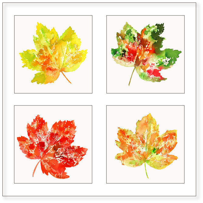 watercolor leaf illustration, maple leaves, oak leaf, red leaf, instant download