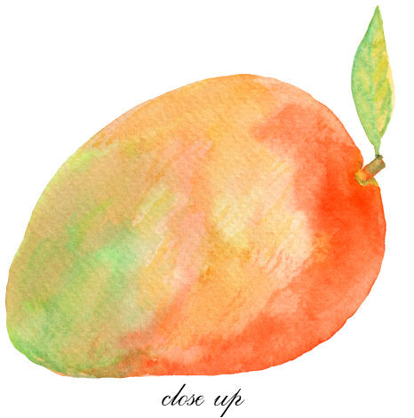 watercolor clipart, fruit, tropical fruit, apples, peaches, mango, pineapple, melons, lemons