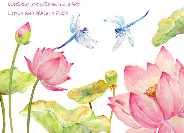 watercolor pink lotus flower and dragon fly, wedding flowers, wedding clipart