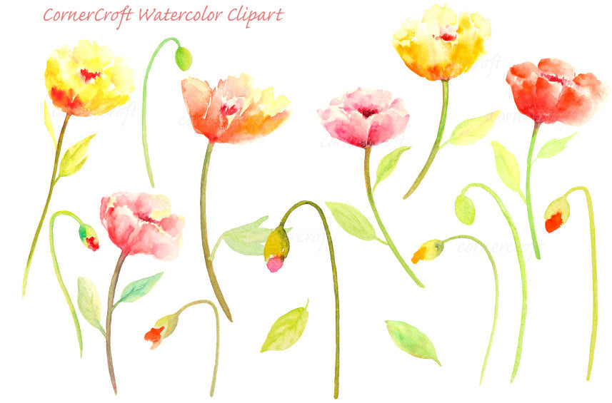 watercolor yellow poppy, orange poppy and red poppy for instant download