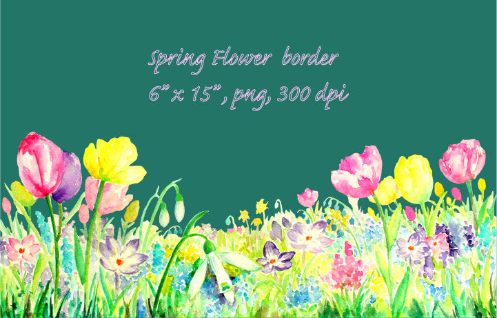watercolor spring flower, long border, tulip, spring flowers illustration