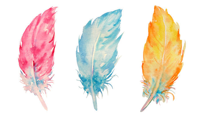 watercolor feather illustration, instant download of feathers