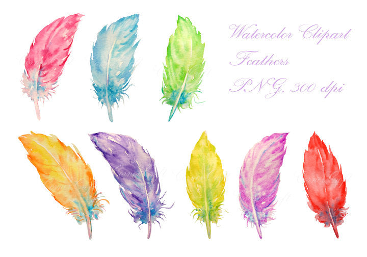 Watercolor feather clipart, pastel color feather illustration