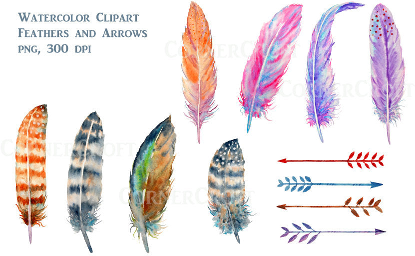 Watercolor boho feathers brown and purple spotted, arrows instant download