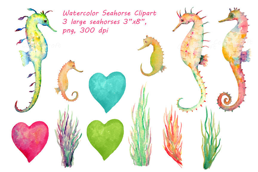 watercolor seahorse clipart, seahorse illustration, seahorse family
