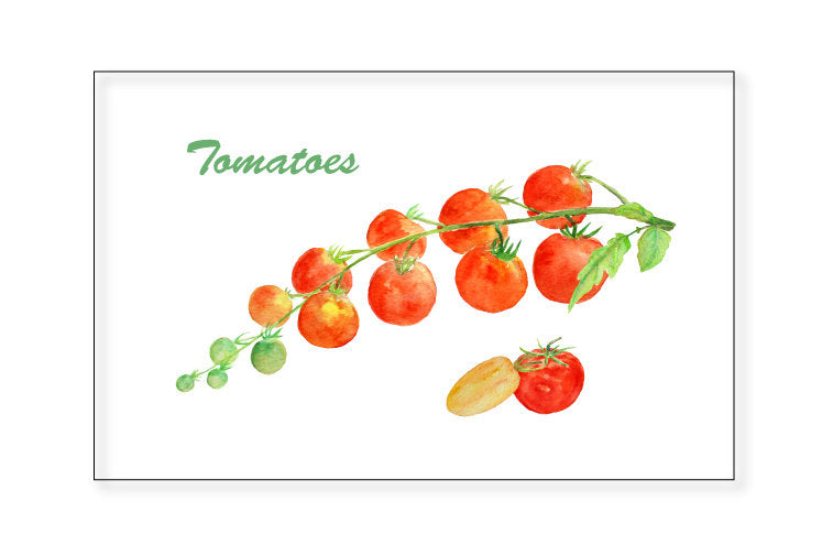 watercolor truss of tomato, watercolour red tomato, tomato illustration, instant download