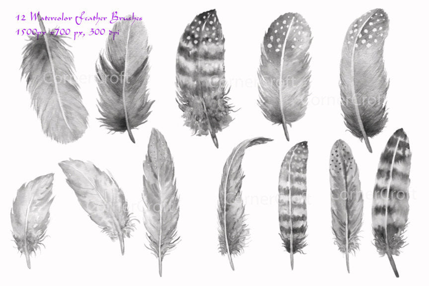 watercolor photoshop brush, feather brush, abr brush, instant download