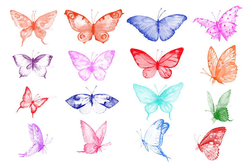 photoshop brush, butterfly, watercolor butterfly, installable items, digital download, insect illustration