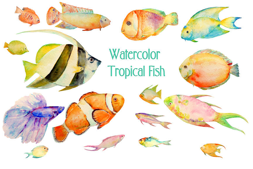 watercolor tropical fish clipart, fish illustration, colourful fish