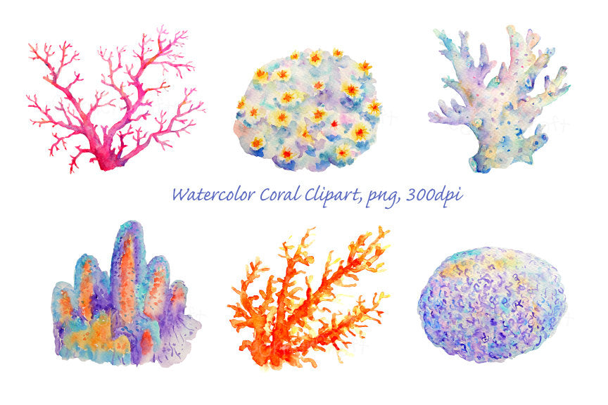 watercolor coral illustration, pink, orange and purple coral