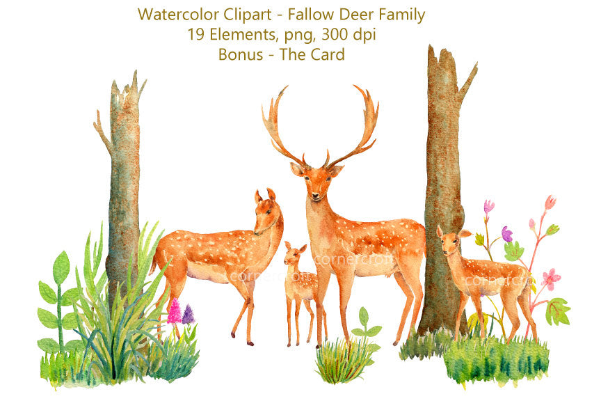 watercolor deer family, deer clipart, stag, fawn, deer family, easter, deer illustration