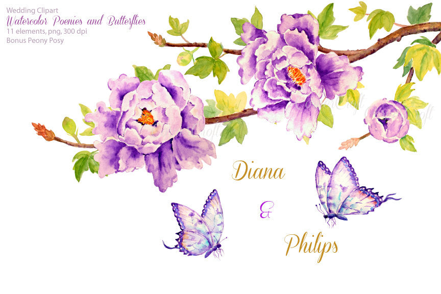 watercolor peony clipart, peony, butterfly, instant download