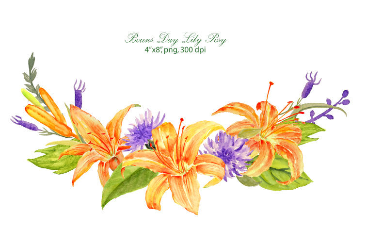 watercolor edible flower, watercolor day lily, roses, corn flowers,lavenders and leaves