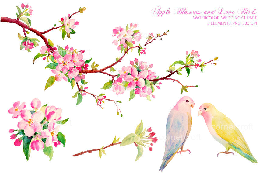 apple flower branch, blue love bird, yellow love bird, wedding illustration