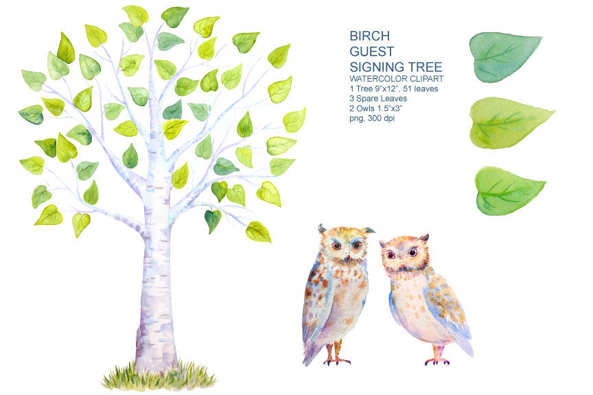 Wedding Clipart, watercolor birch guest signing tree, owl, bird