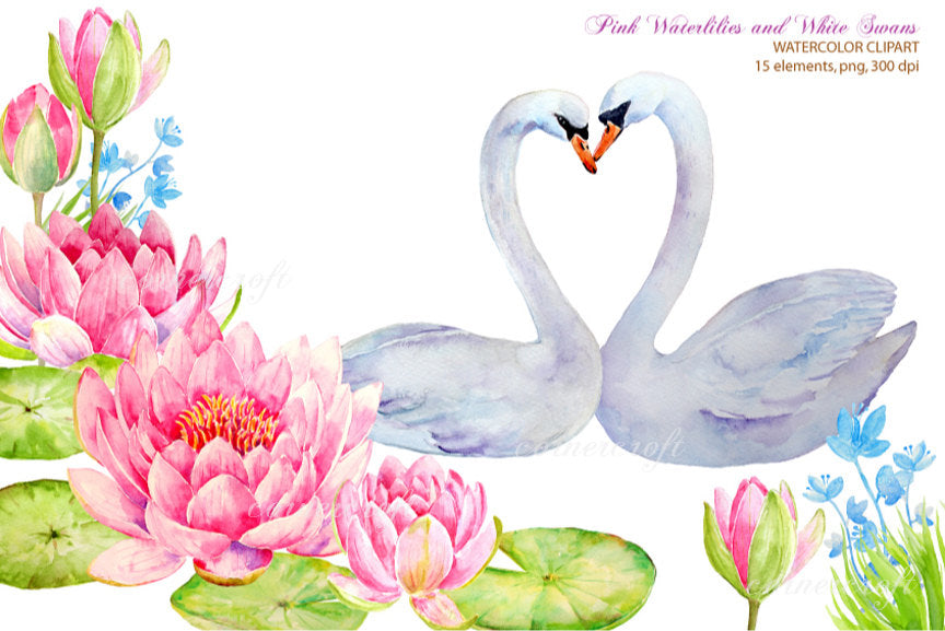 watercolor wedding clipart, white swan, waterlily water lily