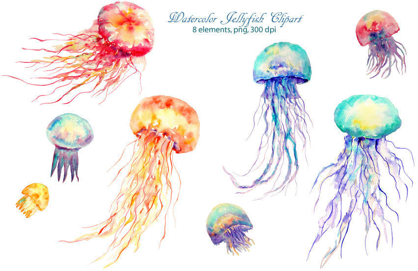 watercolour clipart jellyfish, jellies, blue, purple and orange jellies.