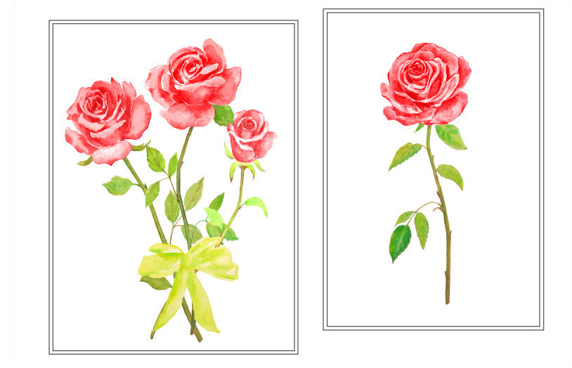 watercolor rose clipart, red rose illustration instant download