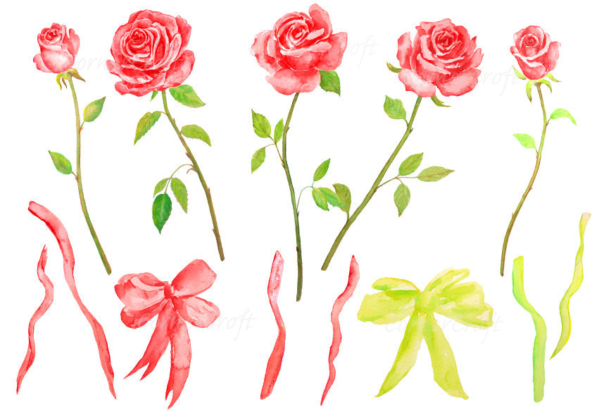 watercolor clipart red rose, cut flower, florist flower
