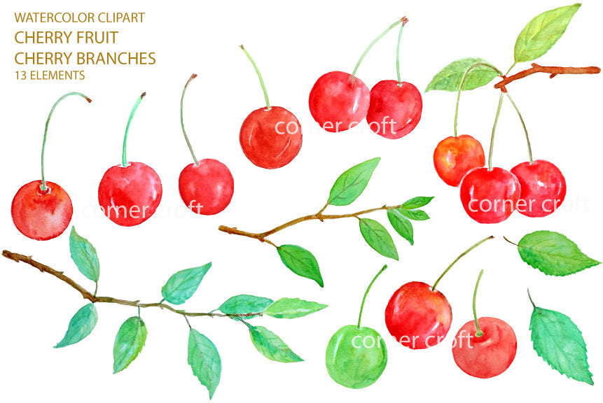cherry elements, watercolor cherry clipart, red cherry, fruit, corner croft.