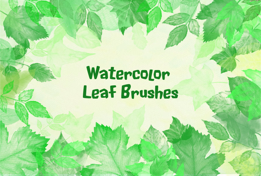 Leaf brush, watercolor leaf brush, Adobe Photoshop brush, leaf illustrations. watercolor leaves