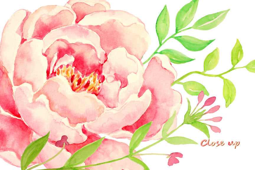 create your wedding invitation with beautiful watercolor peony clipart