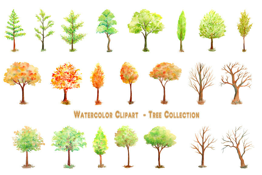 Hand painted watercolor tree collection - variety of trees in green and gold color, and bare trees in winter