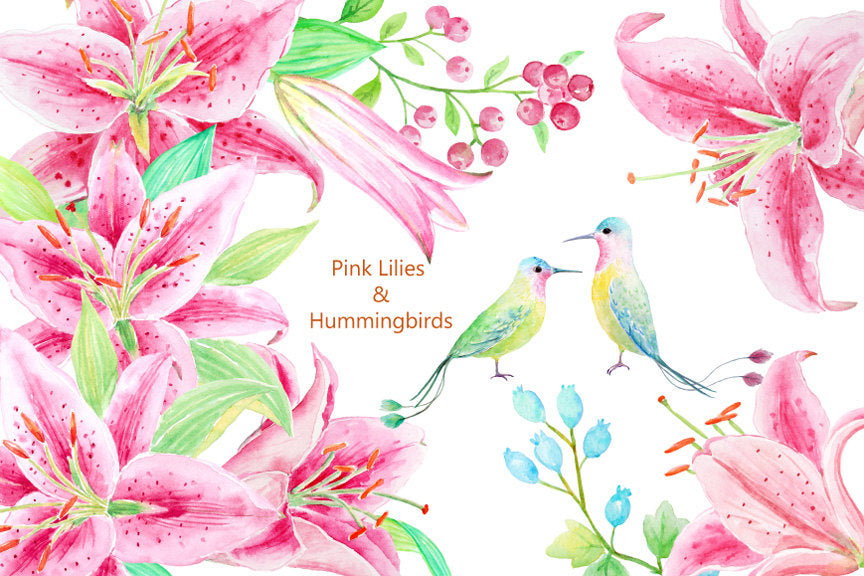 watercolor pink lily and humming birds for instant download