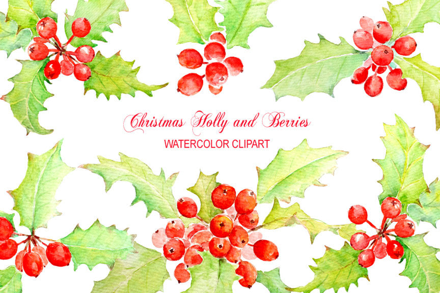Watercolour Christmas Holly and Berry instant download