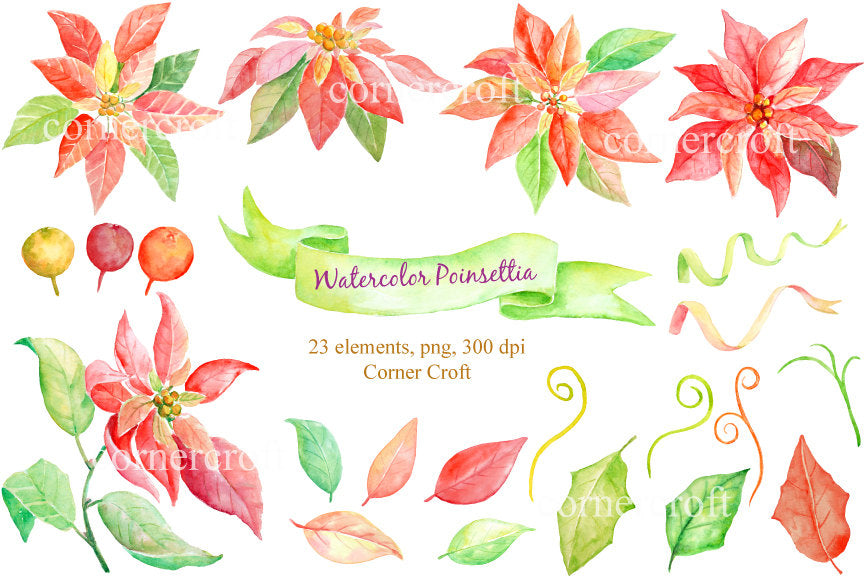 Watercolor clipart Christmas poinsettia, corner croft watercolor illustration