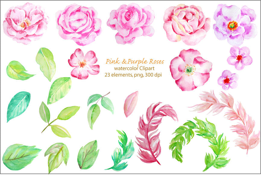 watercolour clipart, pink and purple roses, instant download