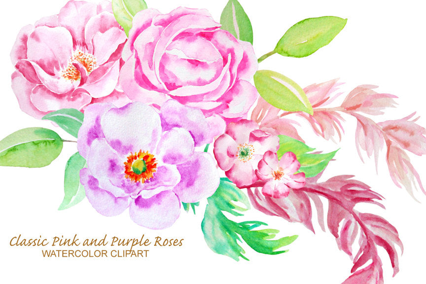 watercolor clipart, pink rose, purple rose, floral composition