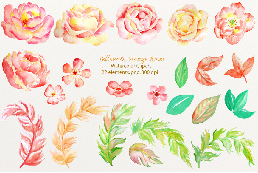 watercolor rose clipart, instant download, rose illustration