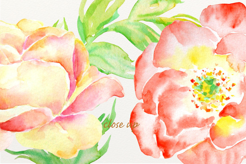 wedding clipart, rose clipart, watercolour clipart instant download