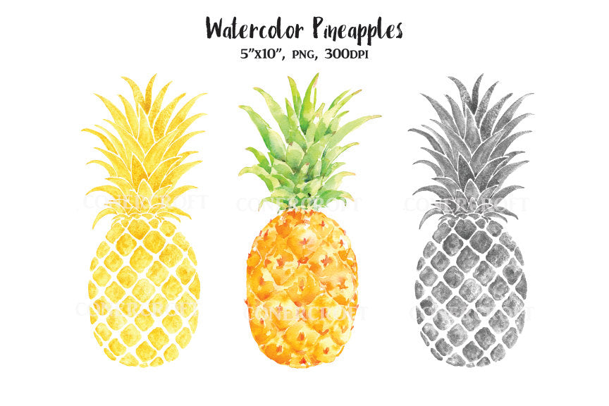 watercolor pineapple, gold pineapple, silver pineapple,