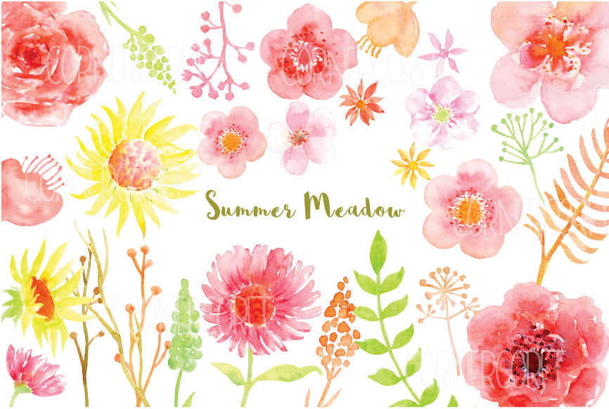 watercolor clipart summer meadow, pink, peach and red flowers, watercolor illustration