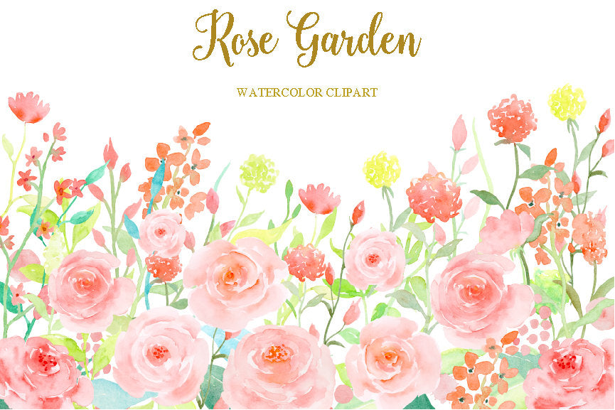 watercolor clipart rose garden, pink rose, pink roses, pink flowers, spring flowers.