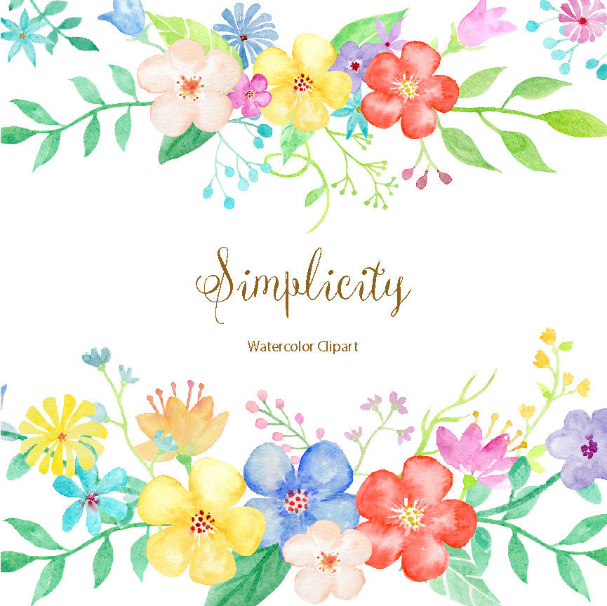 watercolor clipart, simplicity, daisy flowers, floral borders, flower arrangement, digital download