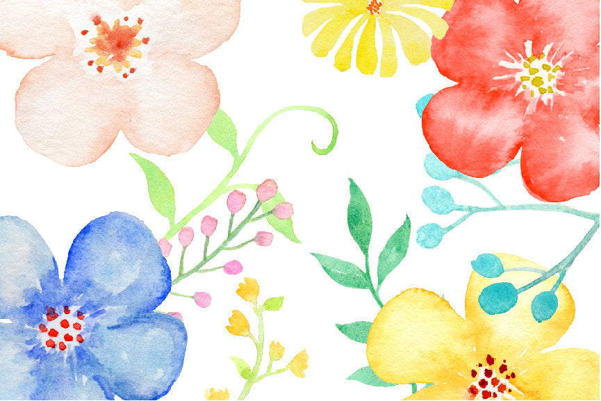 watercolor daisy flower, fresh flower, spring color, pastel flower, digital download