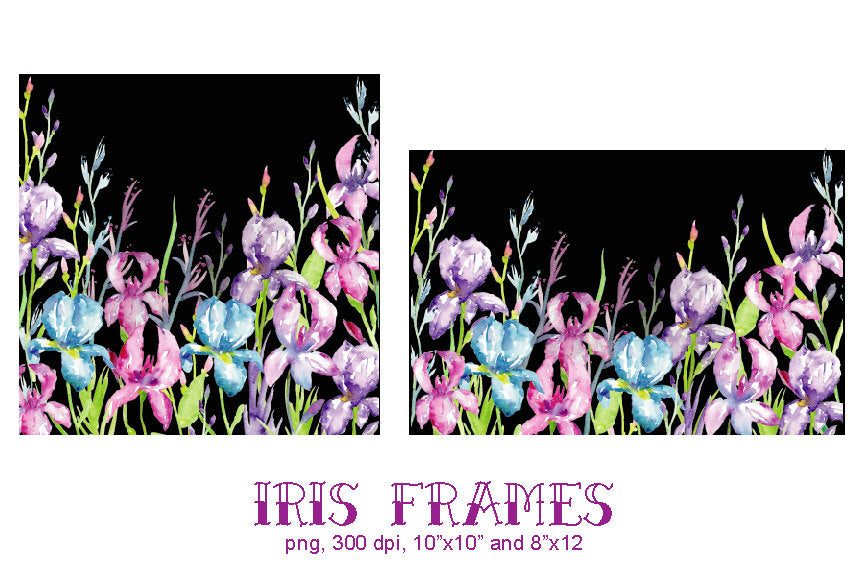 large floral frame, iris frame, watercolour clipart, watercolour illustration