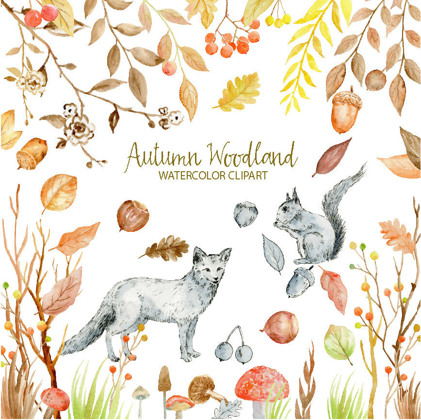 Watercolor Clipart - Autumn Woodland, fox, squirrel, autumn leaves, berries, nuts and mushrooms for instant download