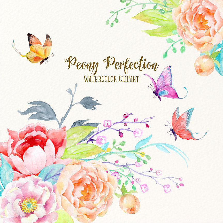 Watercolor peony perfection, pink peony, peach peony, butterfly, Chinese illustration