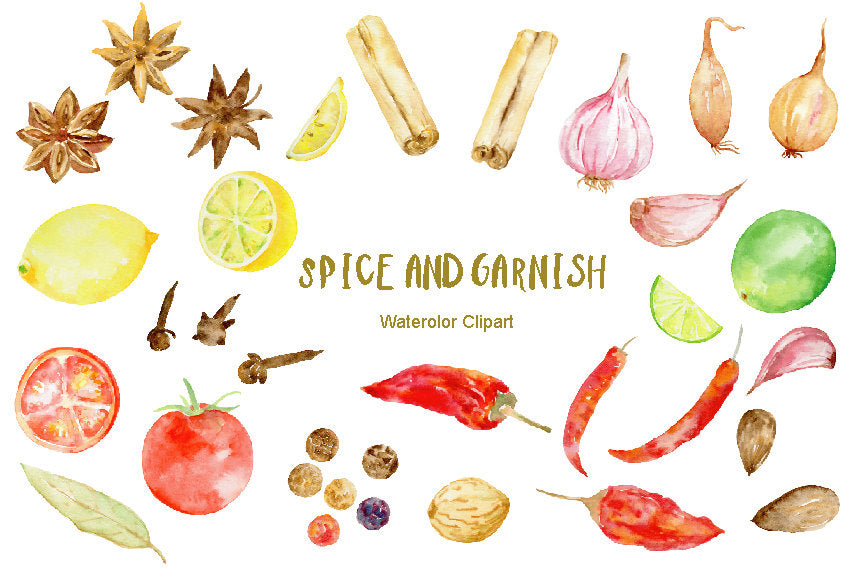 Watercolor clipart spice and garnish, instant download