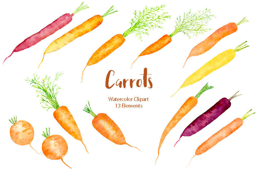 watercolor carrot digital illustration, instant download, corner croft graphics.
