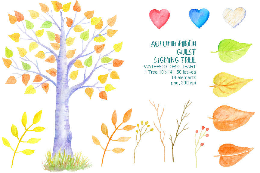 watercolor autumn birch guest signing tree, wedding clipart, instant download