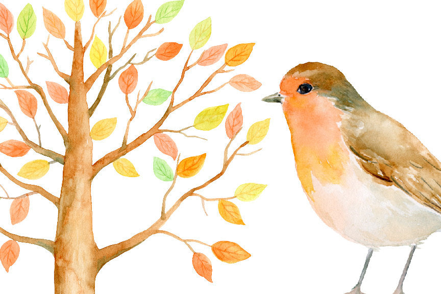 watercolor guest signing tree, robin, bird illustration