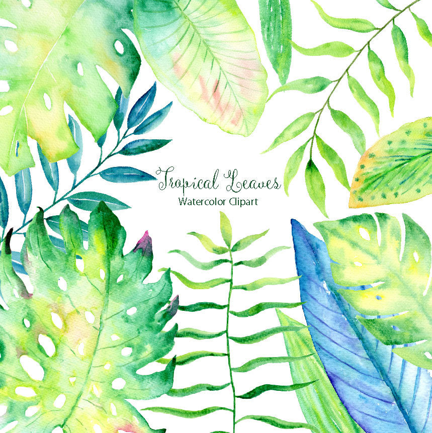 Hand painted watercolor clipart Tropical Foliage, green leaf, tropical leaves, jungle leaves for instant download